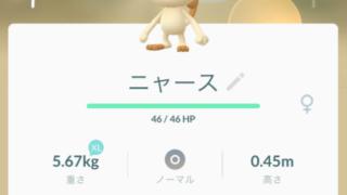 ポケモンGO ニャース