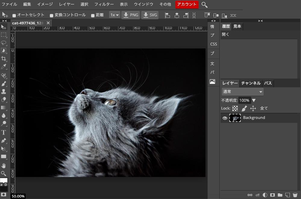 Photopeaで猫の写真を開く