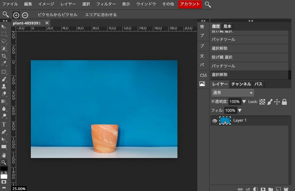 Photopeaで植木鉢の写真から植物を切り取り、植木鉢だけに。