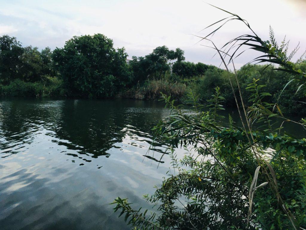 淀川のワンド