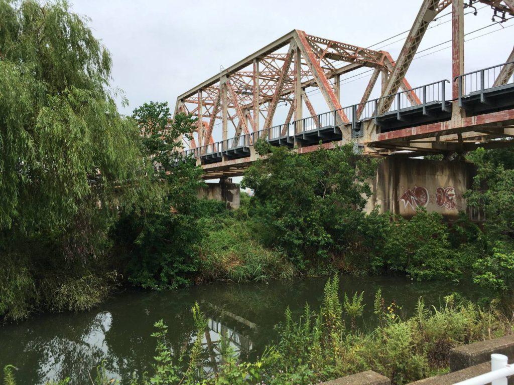 淀川本流横の細い水路みたいなところ