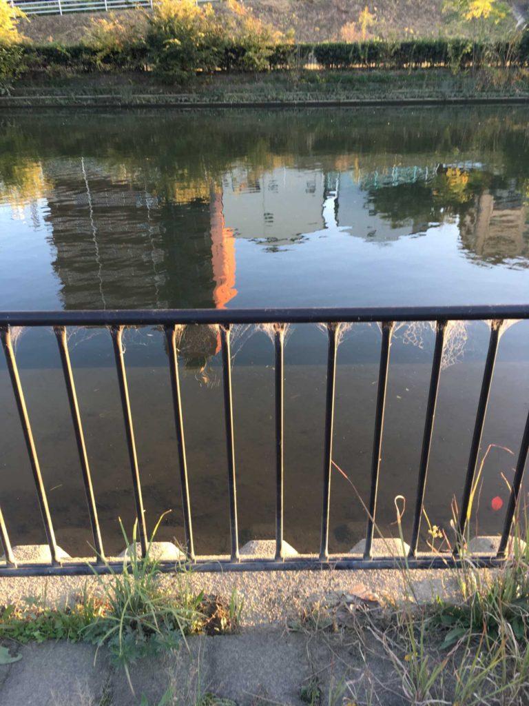 神崎川と水中にあるコンクリート