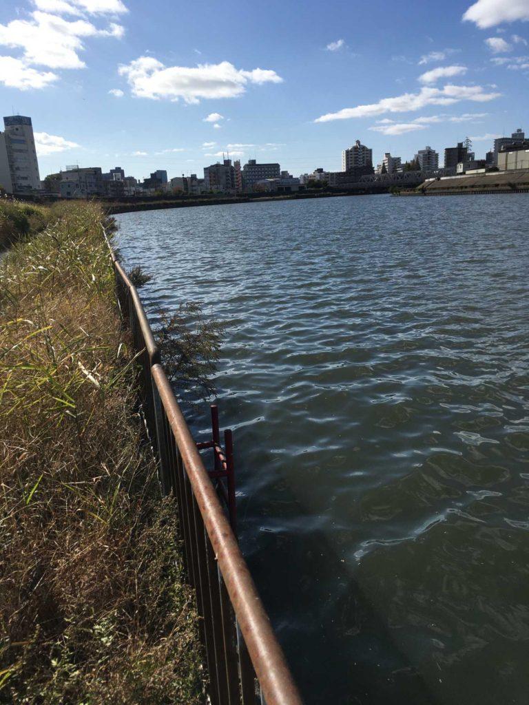 神崎川のストラクチャー