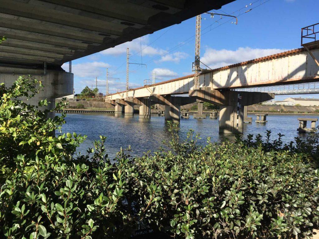 神崎川の植木と橋脚