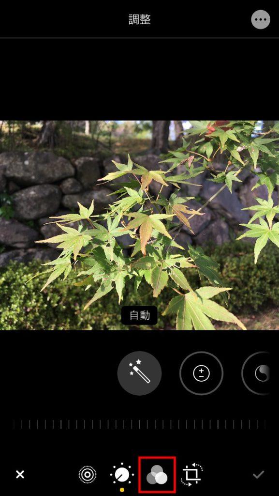 iPhone 写真アプリの編集からフィルター効果