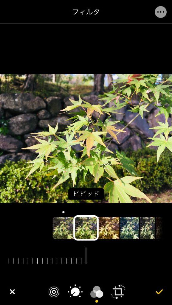 iPhone 写真アプリのフィルター効果のビビット