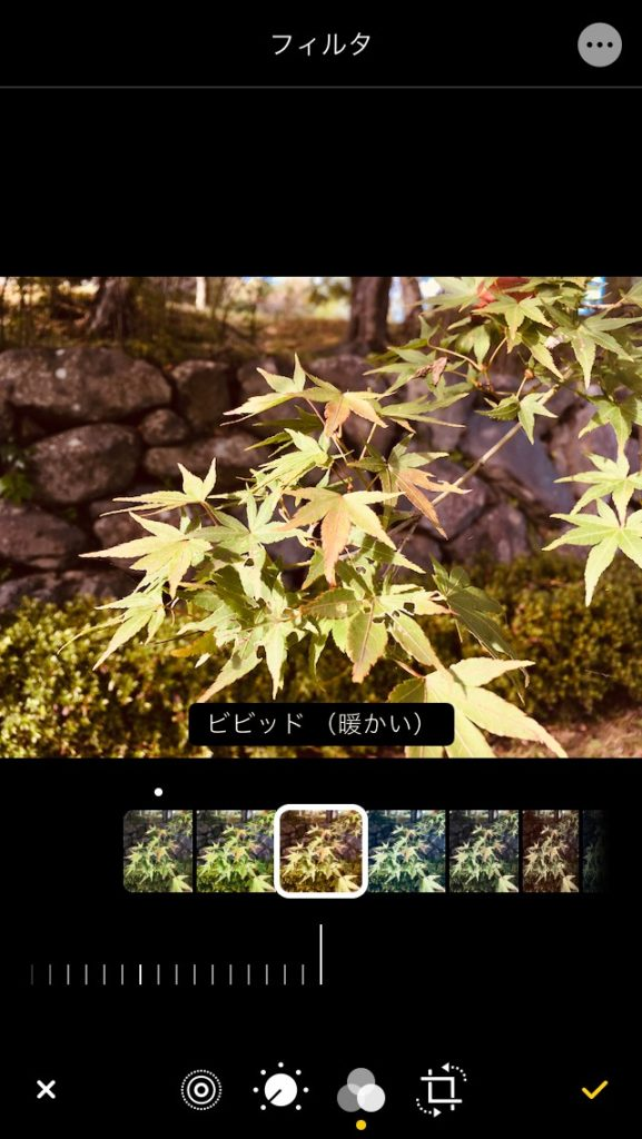 iPhone 写真アプリのフィルター効果のビビット(暖かい)