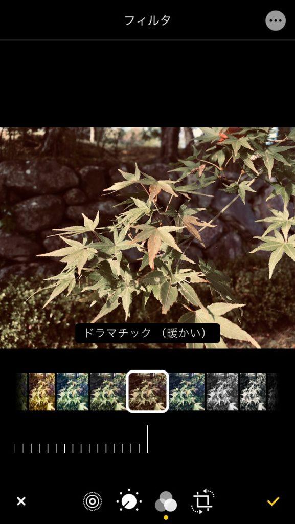 iPhone 写真アプリのフィルター効果のドラマチック(暖かい)