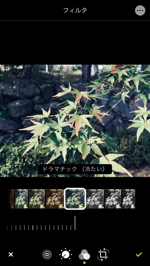 iPhone 写真アプリのフィルター効果のドラマチック(冷たい)
