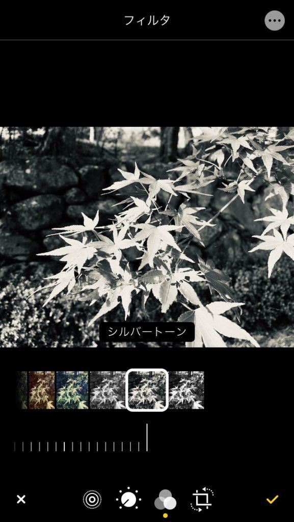 iPhone 写真アプリのフィルター効果のシルバートーン