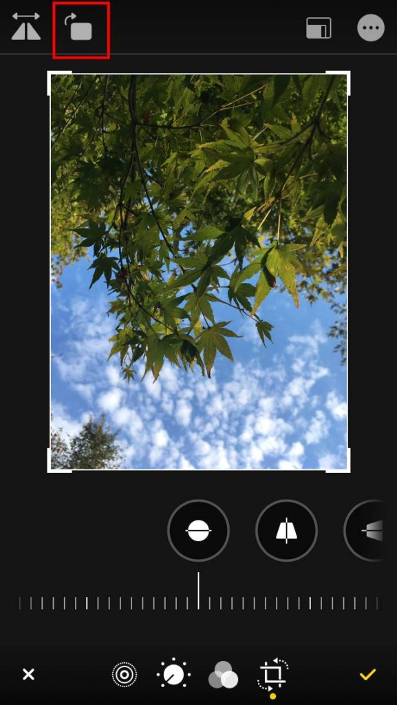 写真編集 写真を右方向に45°回転