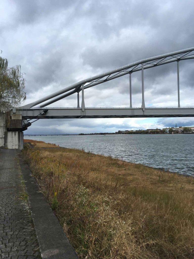 瀬田川にかかる橋と枯れかけの草