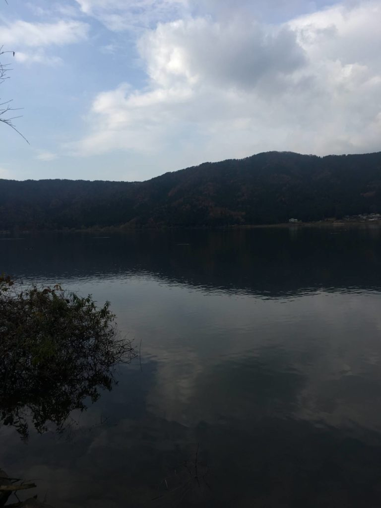 余呉湖北東部