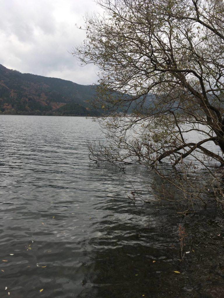 余呉湖の冬のレイダウン