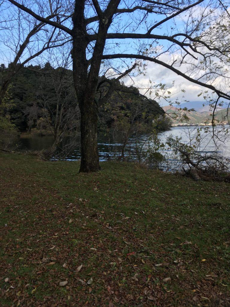 余呉湖西側のワンド付近