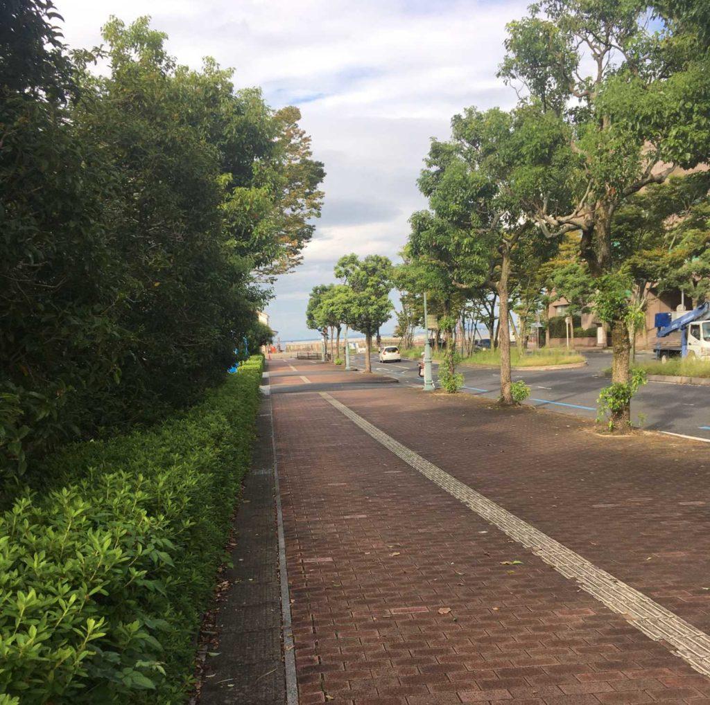 大津駅から徒歩。琵琶湖が見えた。